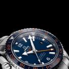 Omega Seamaster Planet Ocean 600m GMT Watch