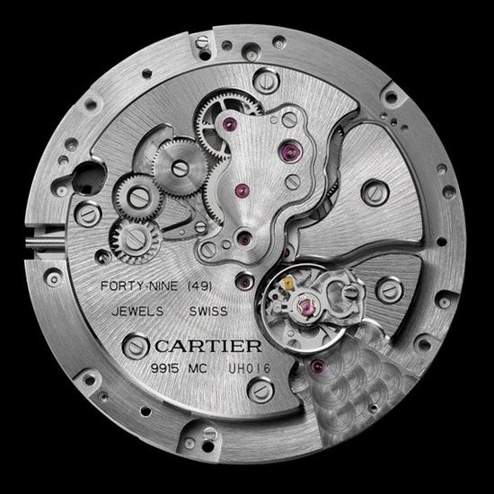 Cartier Panthères et Colibri Watch - Caliber 9915 M Mechanical Movement