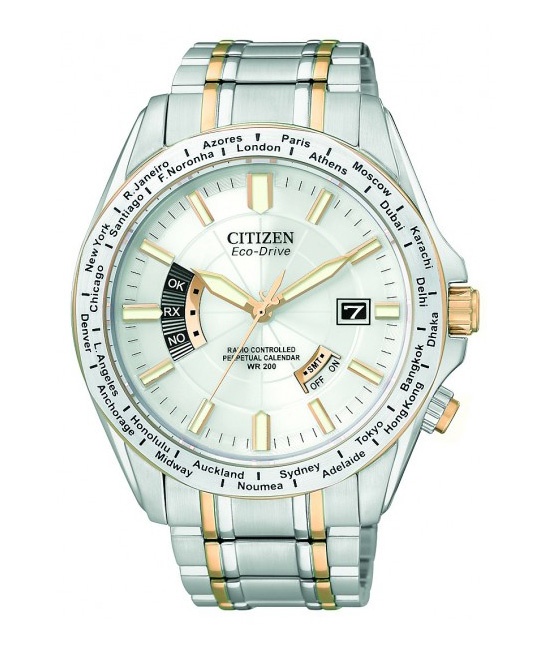Citizen World Perpetual A-T Watch