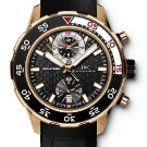 IWC Aquatimer Red Gold Chronograph Watch IW376905