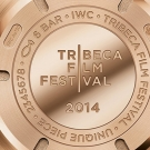 "IWC Pilot's Spitfire Chronograph Edition ""Tribeca Film Festival 2014"" Watch Case Back"