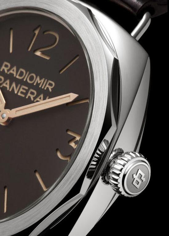 Panerai Radiomir Platino PAM521 Watch Side