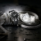 Ulysse Nardin Lady Diver Edition 2014 Watch
