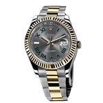 Rolex Datejust Oyster Perpetual 36 mm Watches 116333