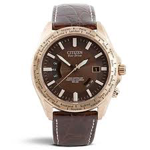 Citizen World Perpetual A-T Watch cb0003-08x