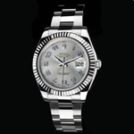 Rolex Oyster Perpetual Datejust II Watches 116334