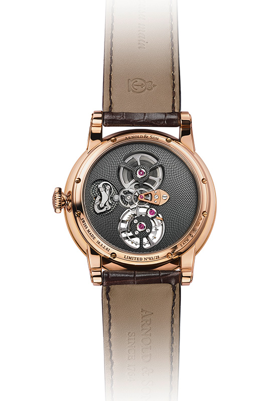 Arnold & Son Royal TES Watch Back